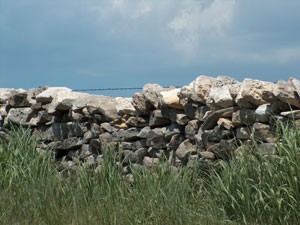 Wabaunsee County Stone Fences